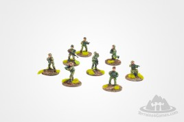 Polish Modern Soldiers (8) 15mm