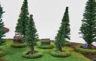 Forests Set