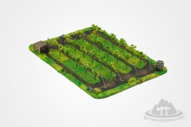 Vineyard 28 mm