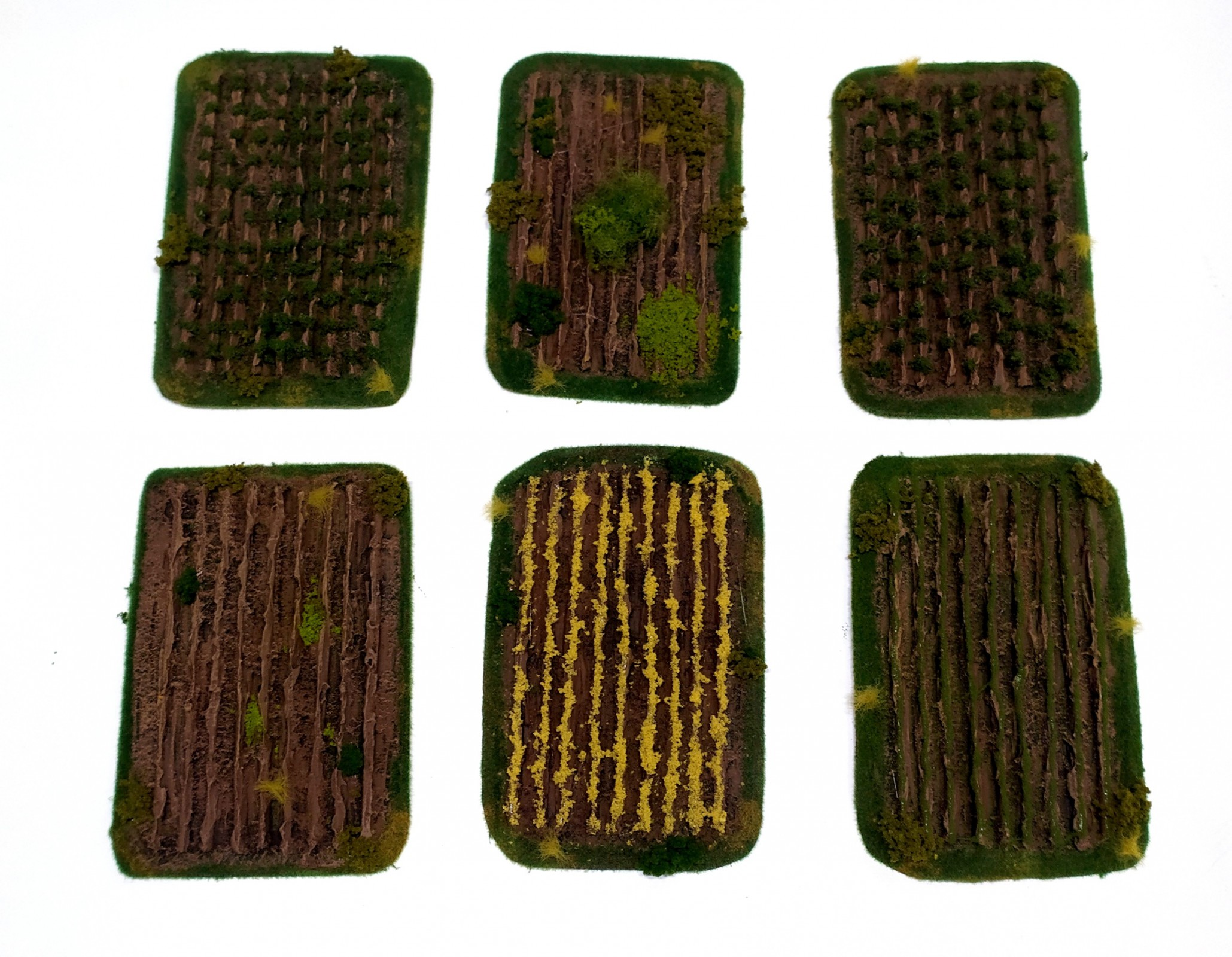 crops-fields-set-6-elements-painted