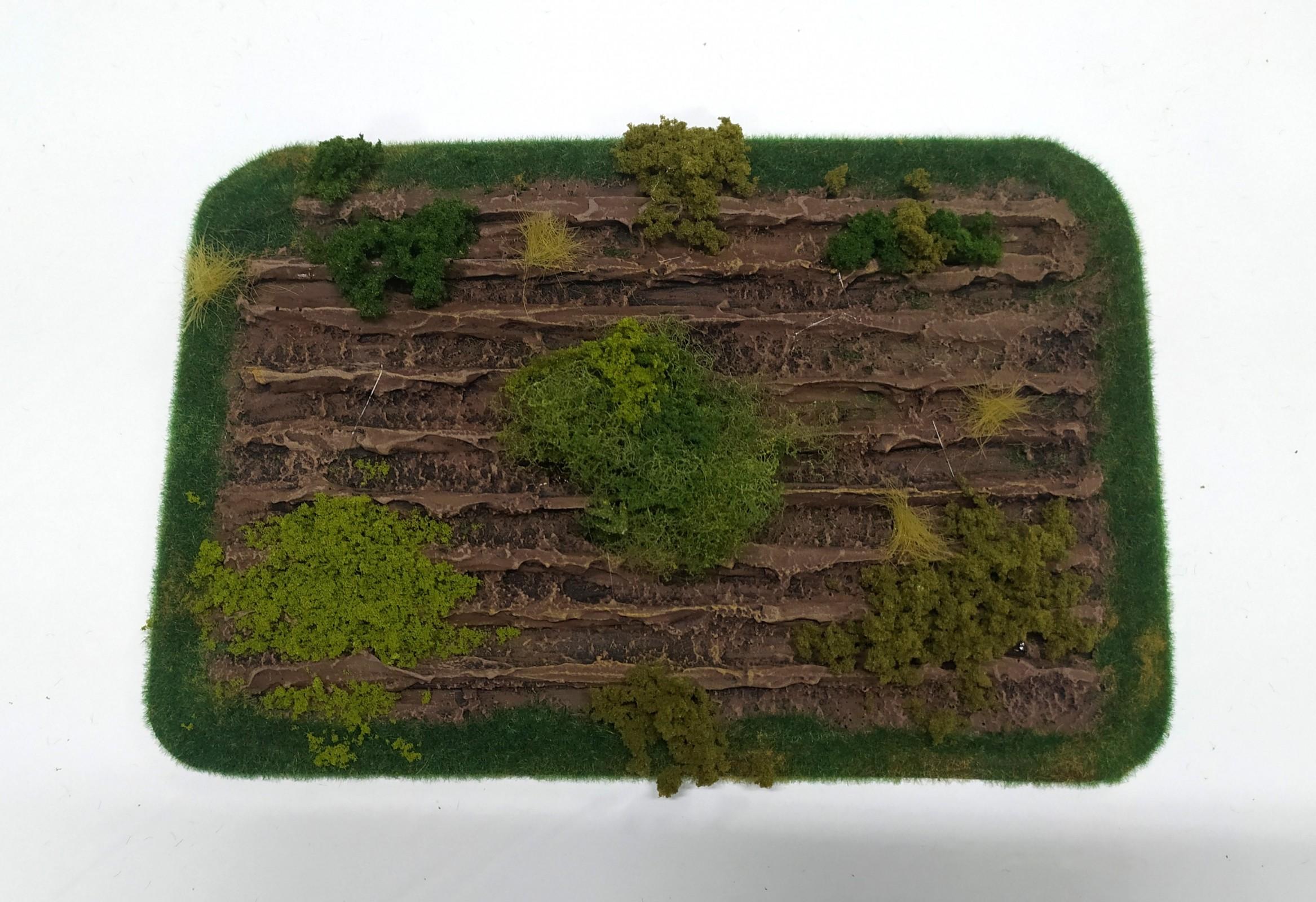weedy-field