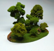 Large Deciduous Forest - 6 trees